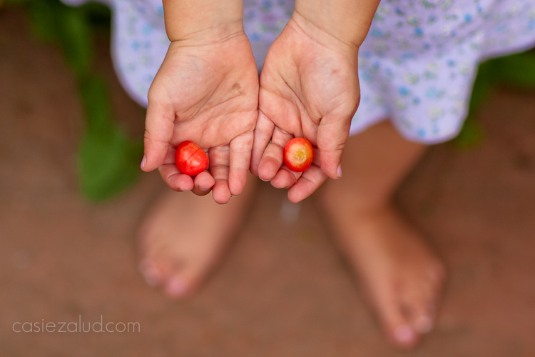 3 year old girl hands and cherries