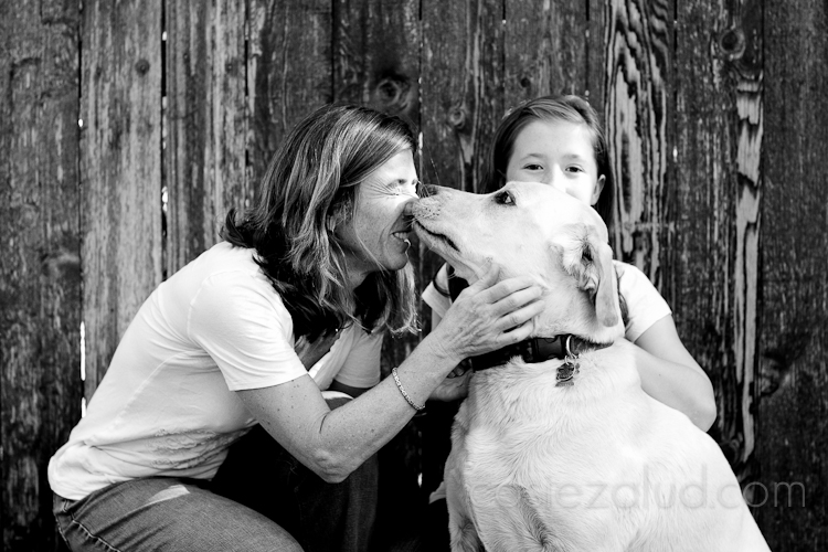 five year old yellow lab kissing mom as a ten year old girl hides behind the dog