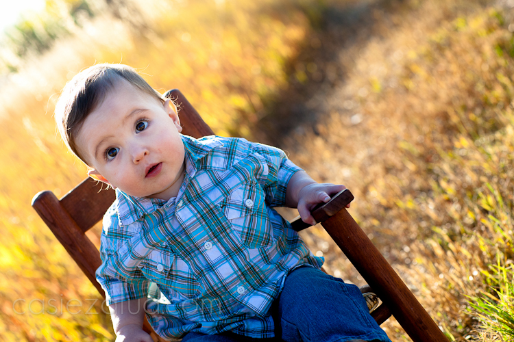 one year old boy sitting on a rocker with tall grass behind it back lite