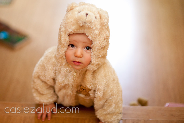 a crawling boy dressed as a bear for Halloween crawling on the floor