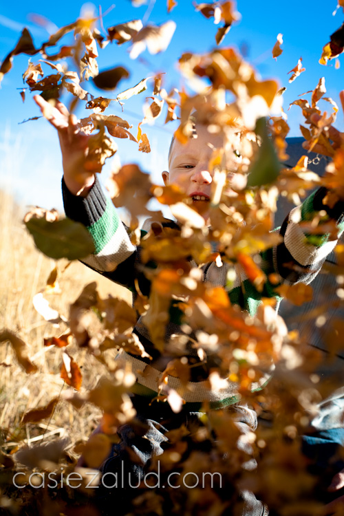 2 1/2 year old boy throwing leaves in the air and you can see a small part of his face