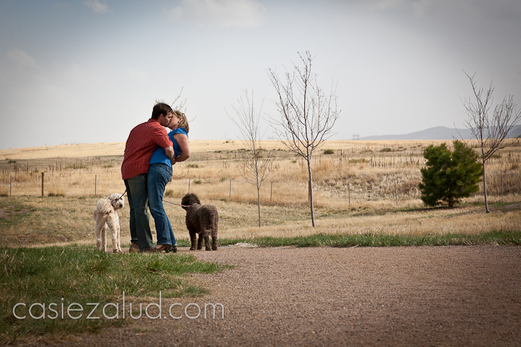family and pet portraits