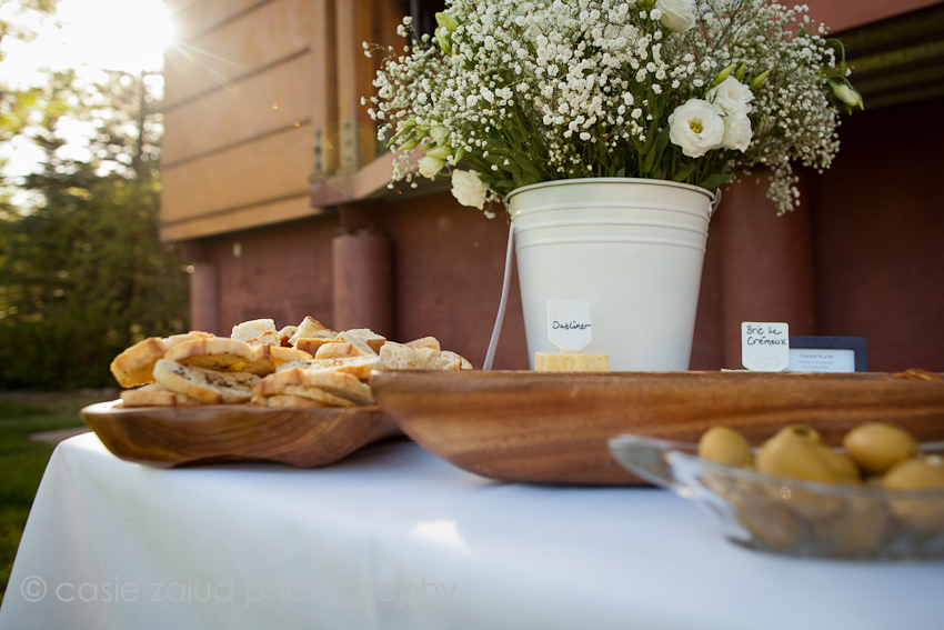 Planet Bluegrass Wedding Photographer - Eat Private Chef & Catering CO.