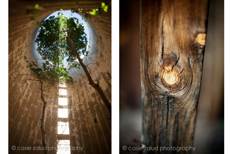 Planet Bluegrass Wedding Photographer