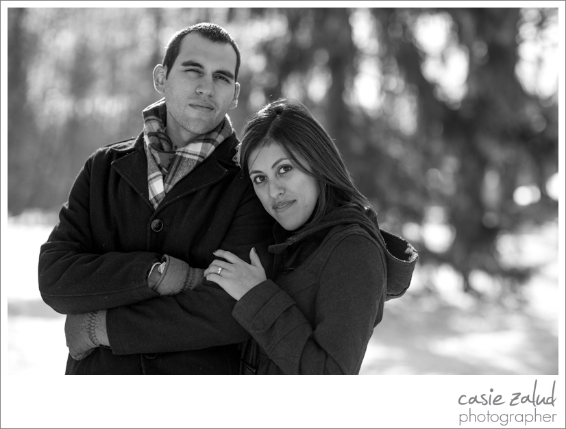 Chagrin Falls Engagement Photographer - Casie Zalud Photographer
