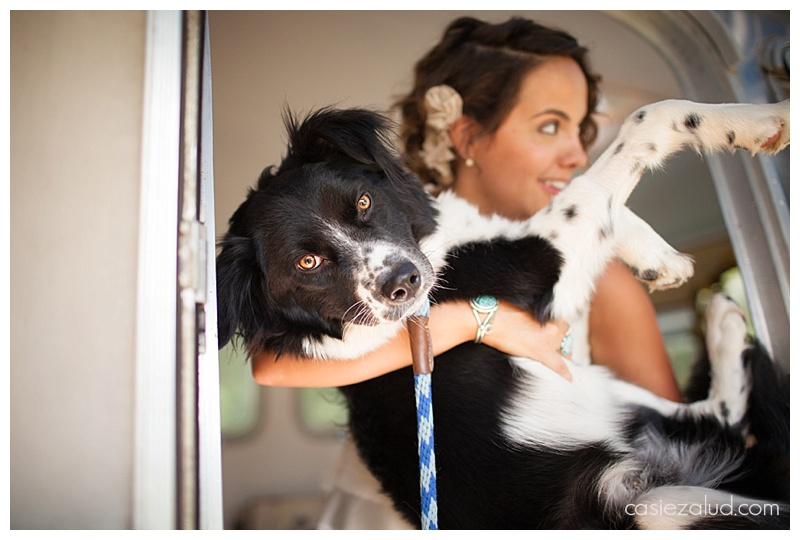 Wedding Dog and bride - the lyons farmette