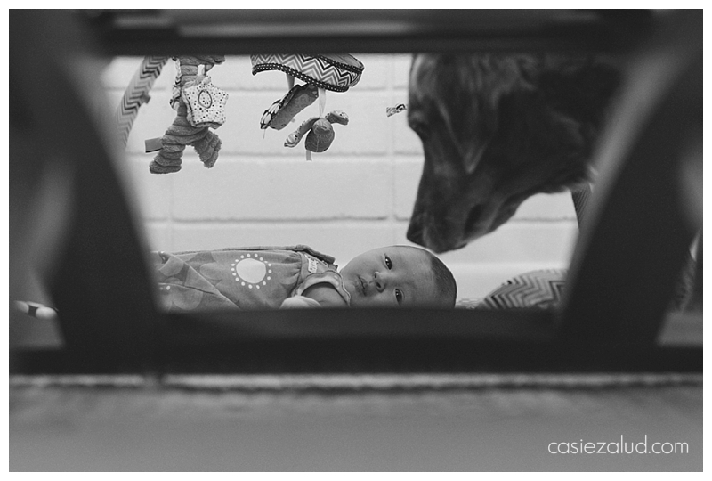 Boulder Newborn Documentary Photography