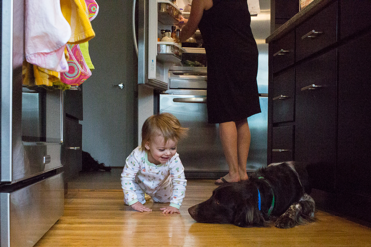 toddler crawling up to sleeping dog on the kitchen floor with a devious look