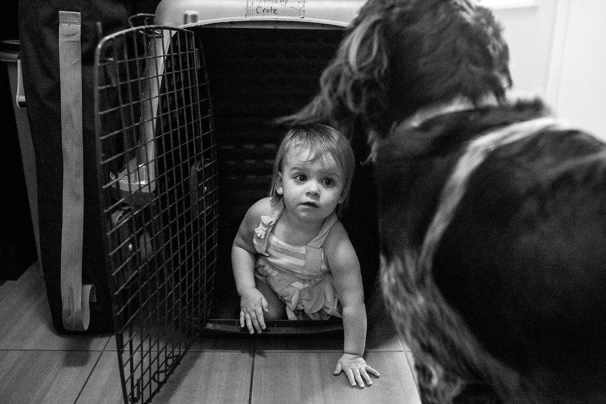 black and white image of toddler in dog crate as dog stands in front of the crate and watches