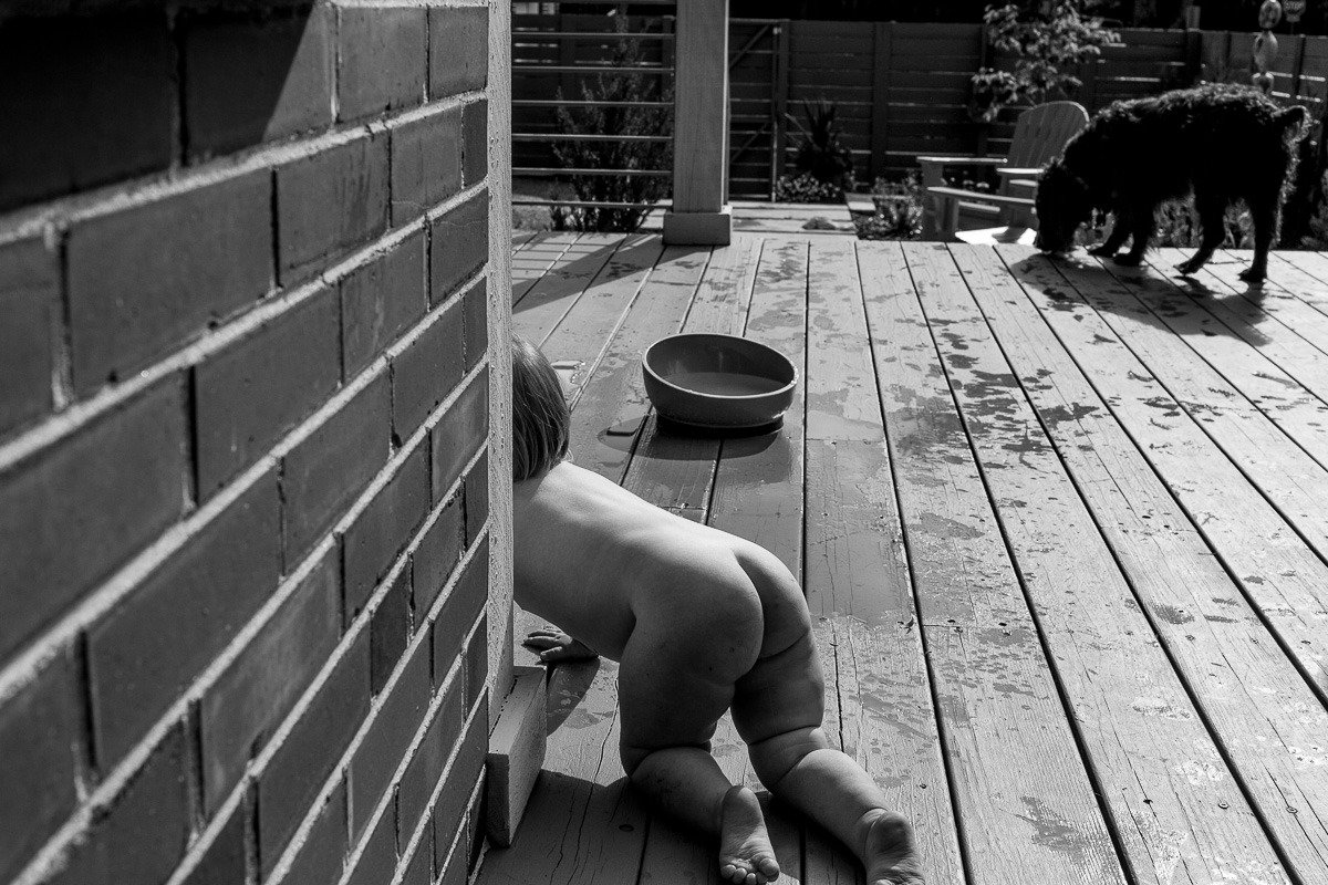 black and white photo of naked child crawling on the deck in in the sun with a dog in the background eating, the child and dog are mimicking each other