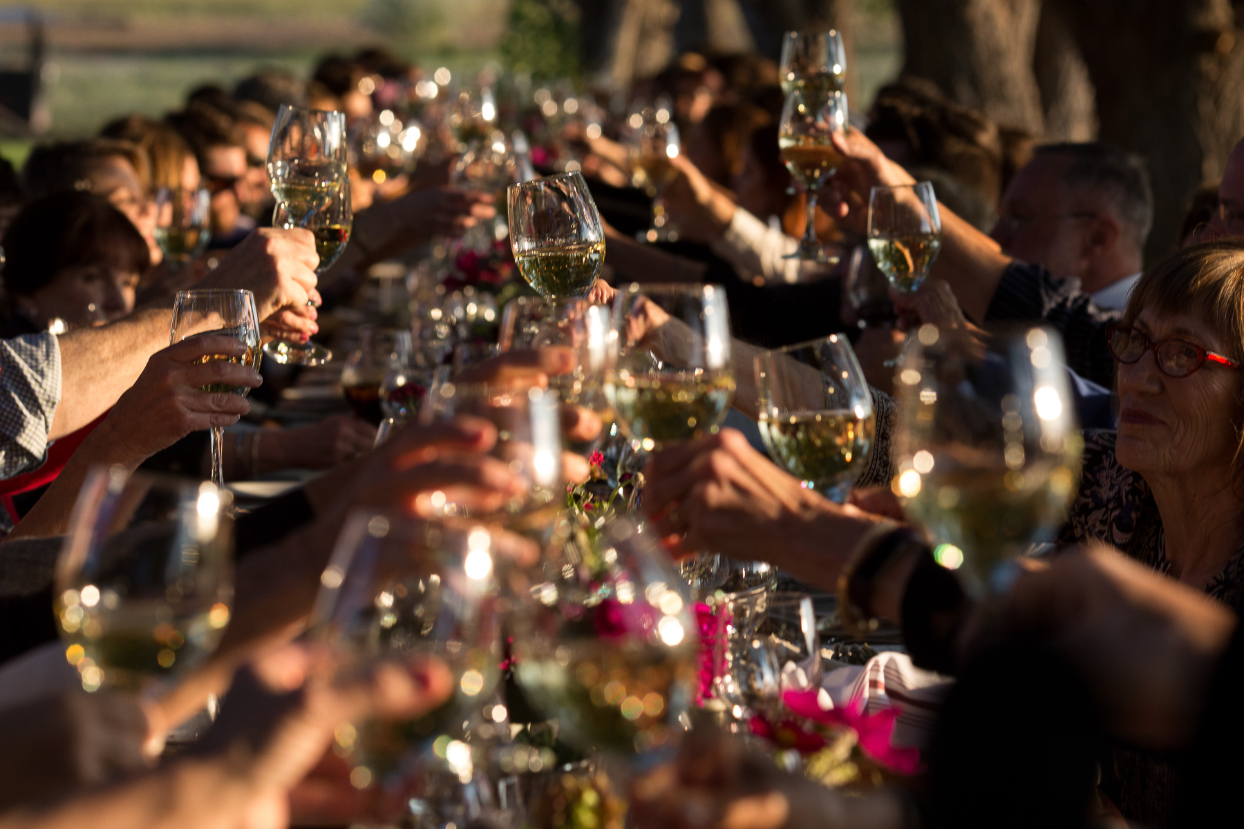 wine glasses toasting at an outdoor farm wedding sitting at a long table
