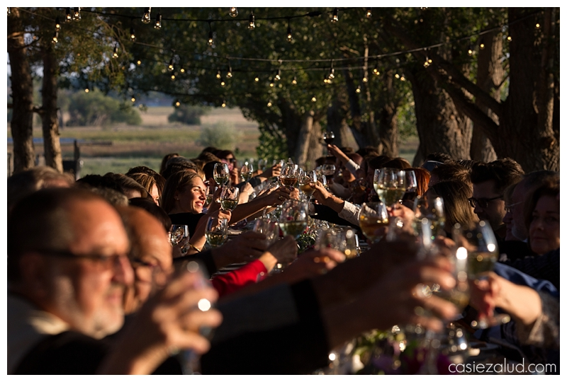 a long table of guests at a farm wedding cheers wine glasses