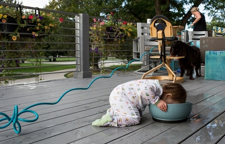 A toddler drinks out of a dog bowl as a dog cleans off her high chair in the background and mom waters flowers in the back