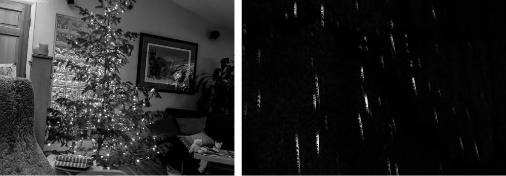 BW christmas tree and christmas tree lights