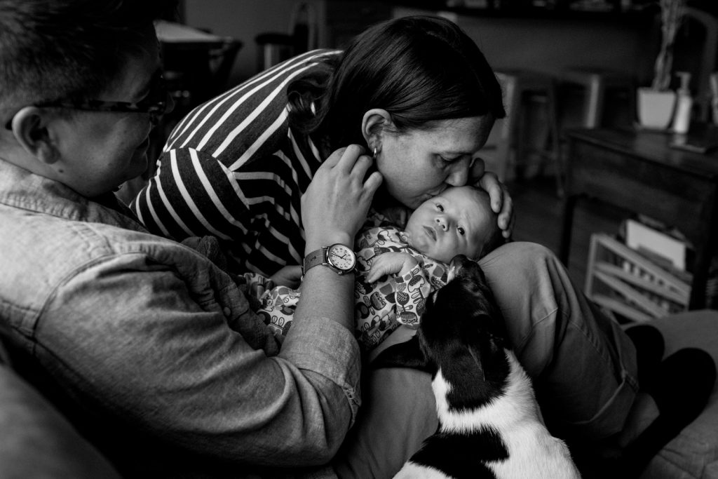 black and white photograph of dad holding newborn on lap while mom and family dog kiss baby's head