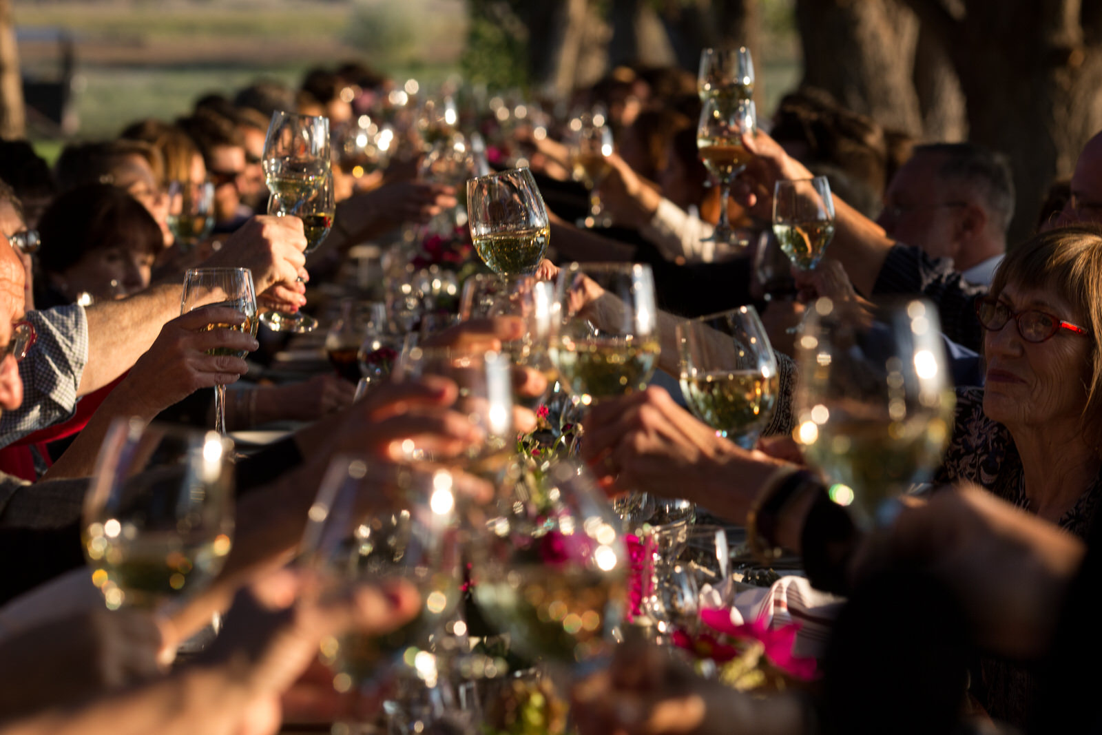 color photo during golden hour of wine glasses toasting down a long table at milston well farm