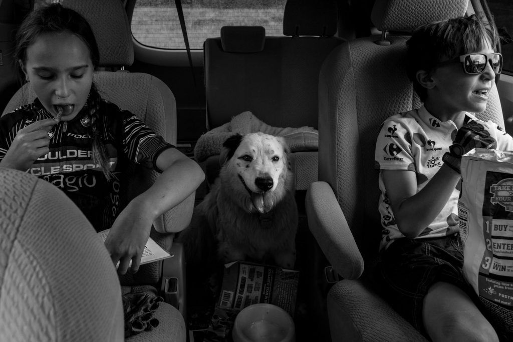 dog in backseat of car with rest of kids