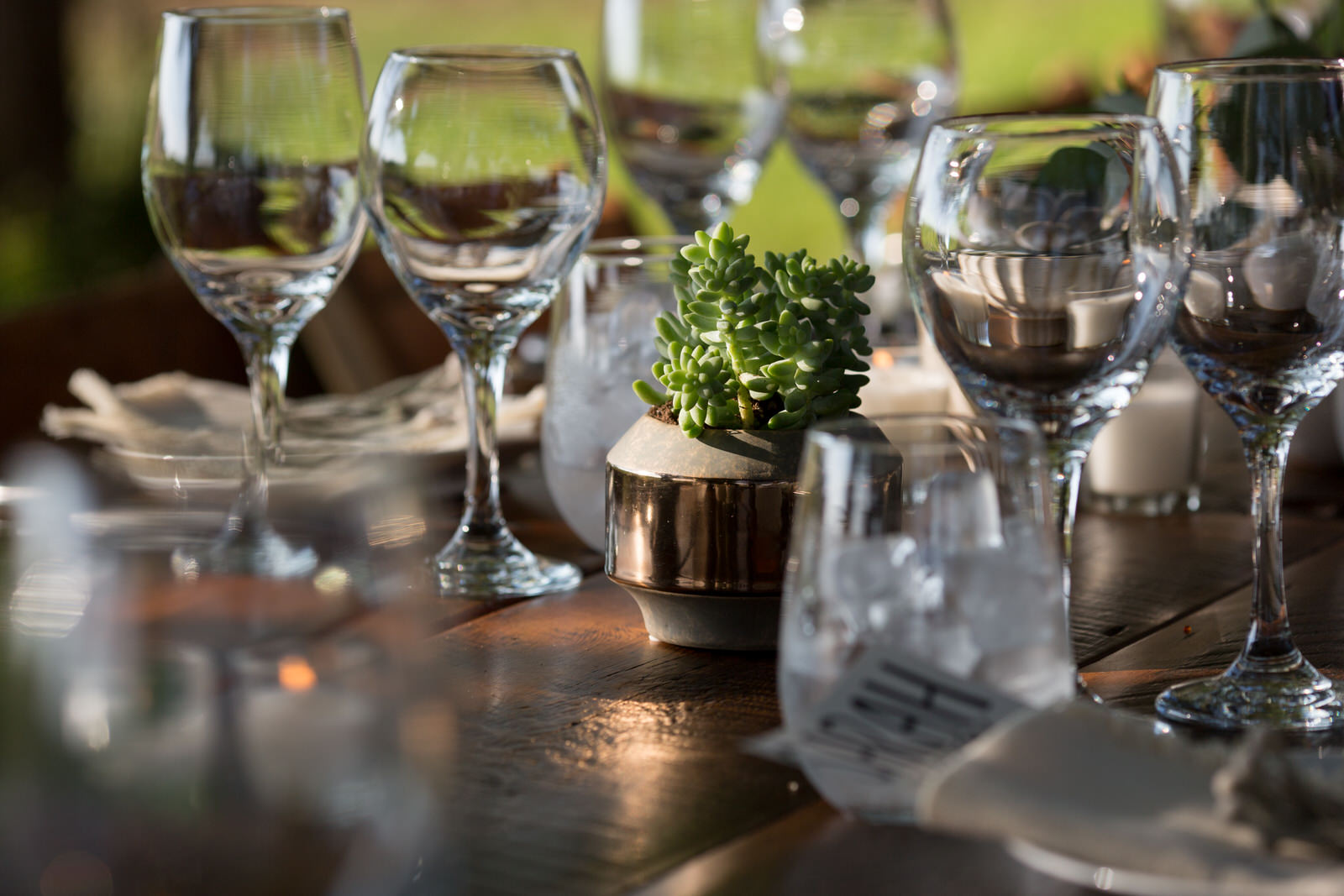 wine glasses in the sunlight and a succulent on the table at an outdoor wedding i